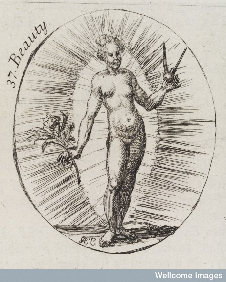 L0035394 Plate illustrating a personification of 'Beauty'