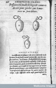 L0007243 Illustration of Pessaries, 16th century