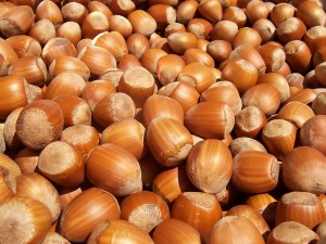 Image courtesy of wikicommons. Lots of hazelnuts. Photo by Fir0002